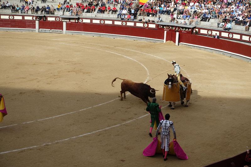bullfight4